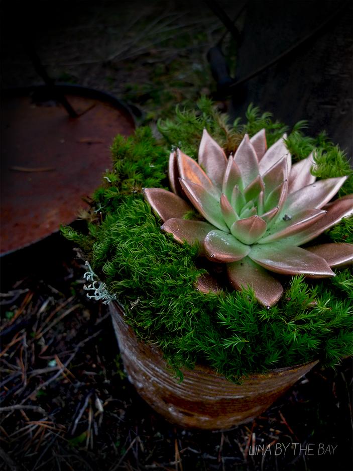 rusty flower linabythebay