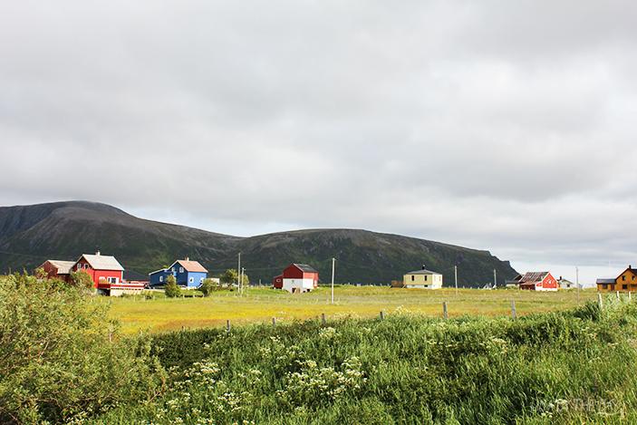 Andøya_25