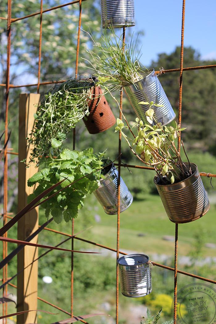 Garden 10 Linabythebay