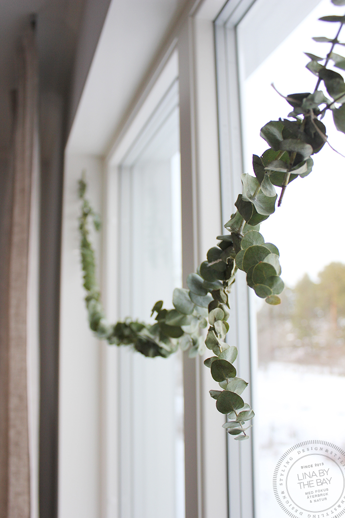 eucalyptusgirang-2-linabythebay
