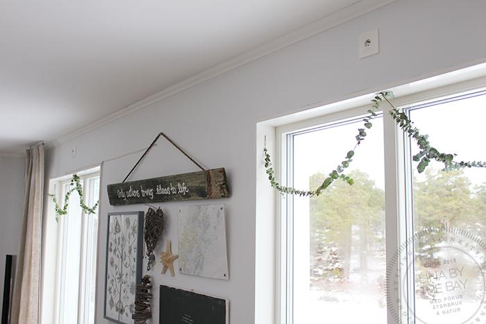 eucalyptusgirang-3-linabythebay
