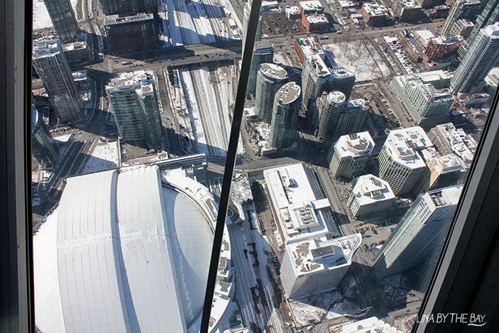 Toronto 6 Linabythebay