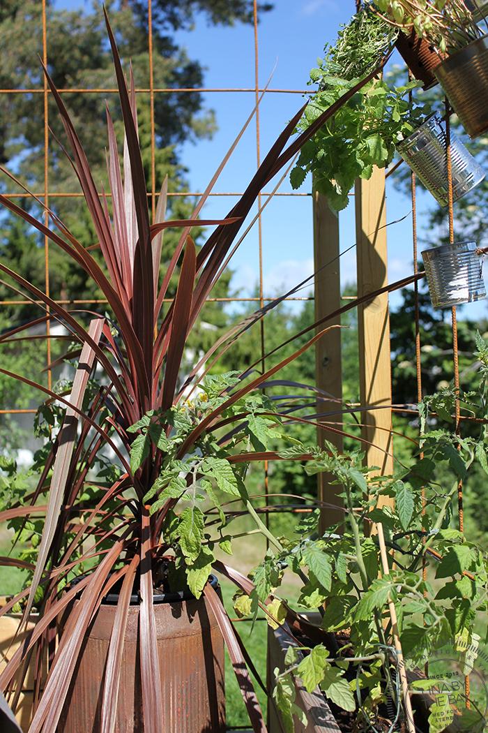 Garden 9 Linabythebay