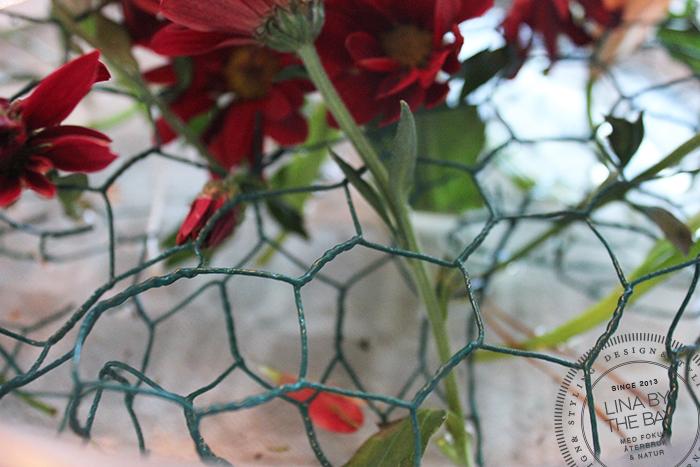 blommor_5-linabythebay