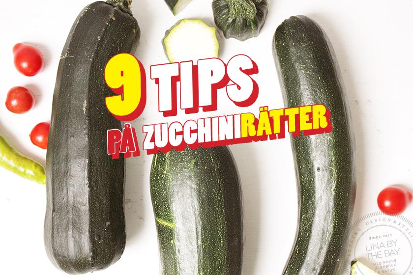 9 tips på zucchinirätter